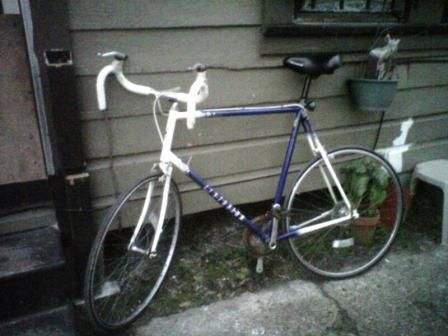 Centurion Sport DLX Road Touring Bike Bicycle - $200 (Houston, Central)
