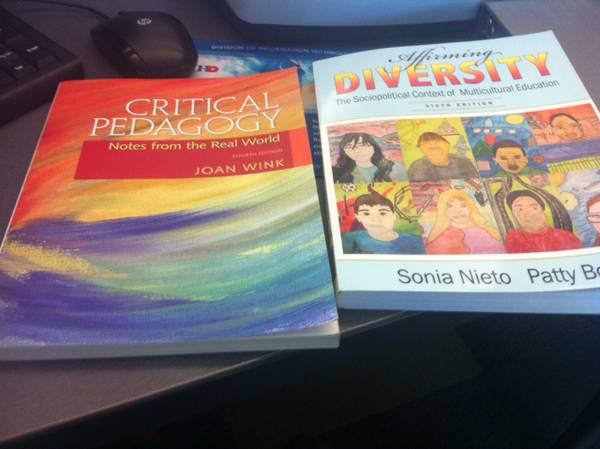 UHD books.. Critical Pedagogy and Affirming Diversity (Meyerland.. South West)