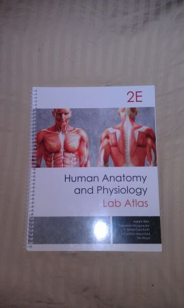 San Jac College Anatomy Physiology 12 Lab Book for - $40 (South Houston)