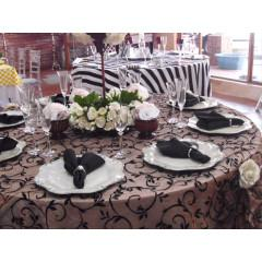 $10,000, Party Rental  Party Decoration Business for Sale