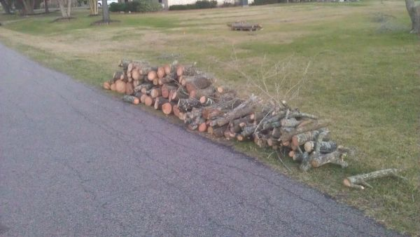 FREE FIREWOOD (PEARLAND)
