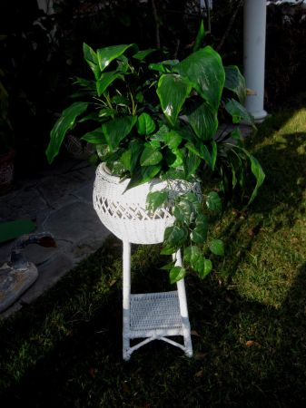 Nice White Wicker Plant Stand - $25 (SpringWoodlands)