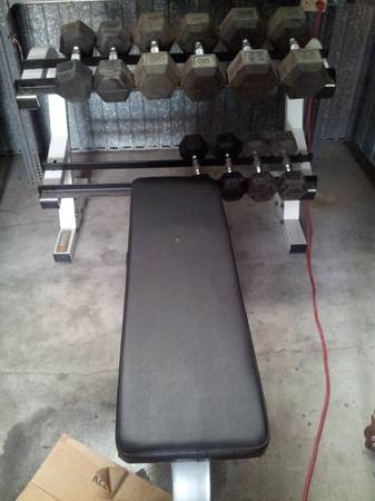 GREAT APEX WEIGHT SYSTEM BENCH, RACK ASSORTED DUMBBELLS - $300 (8320 ALABONSON)