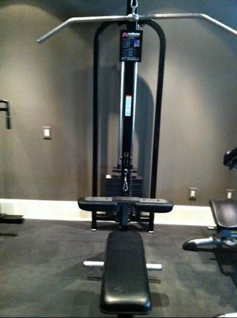 ELITE FX Fitness Equipment - Pro Maxima Selectorizer HiLow Row Mach - $797 (West URice Village)