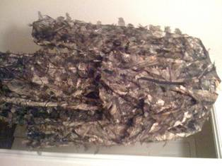Bowtech Diamond Outlaw (RAK) complete hunting packages w gear - $700 (Houston, TX)