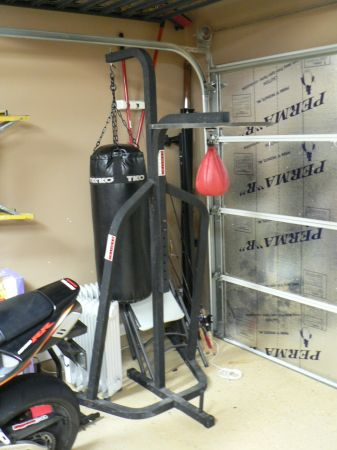 punching bag speed bag combo with stand - $125 (cypress)