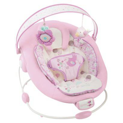 Bright Stars Baby Bouncer - $20 (77073)