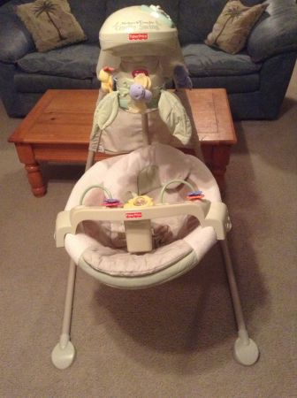 Fisher-Price Natures Touch Papasan Baby Cradle Swing - $75 (Tomball, 77375 NW Houston)