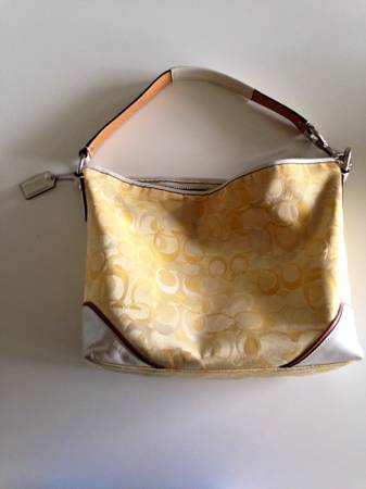 Coach, Anthropologie, UO For sale - x00245 (Chion Forest)
