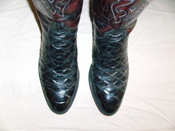 Lucchese real ANTEATER boots - - $475 ((Dallas, TX))