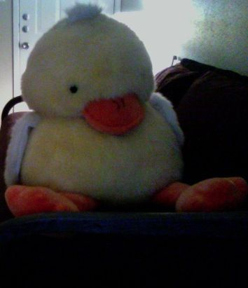 Rare, Large FAO Schwarz Duckie - $100 (League CitySouth Shore Harbor)