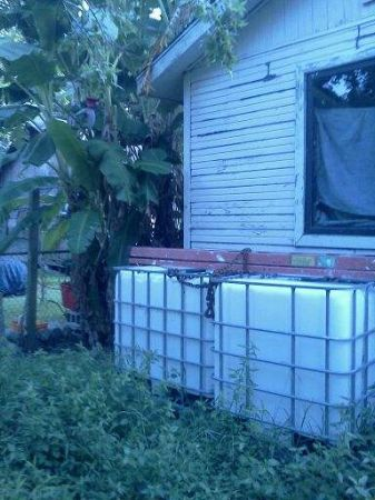 275 gallon water tank or container  - $75 (Independent Heights)