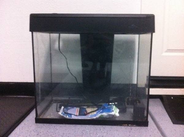 30 gal Eclipse aquarium fish tank with black stand - $50 (heights)