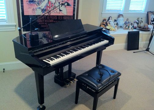 TECHNICS SX-PR1 Digital Ensemble Electronic Grand Piano with Bench - $2500 (Houston)