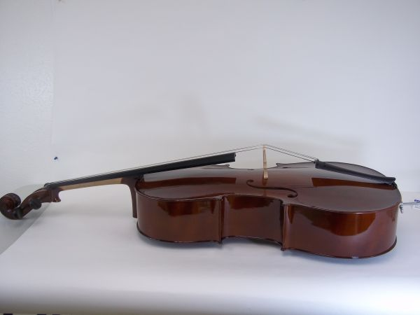 Palatino Cello  - $330 (11260 S. Wilcrest Dr., Houston, Tx 77099)