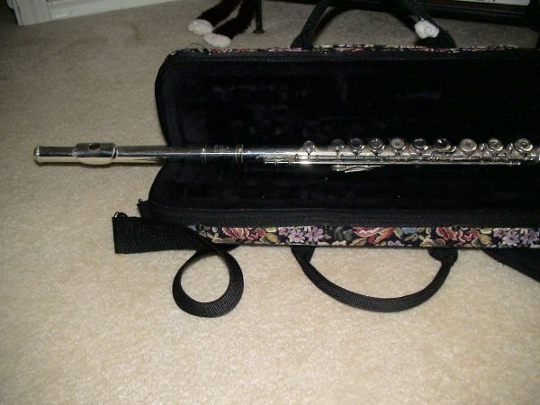 YAMAHA FLUTE 285SII OPEN HOLE- Plays very well-with case - $180 (katy- 77449)