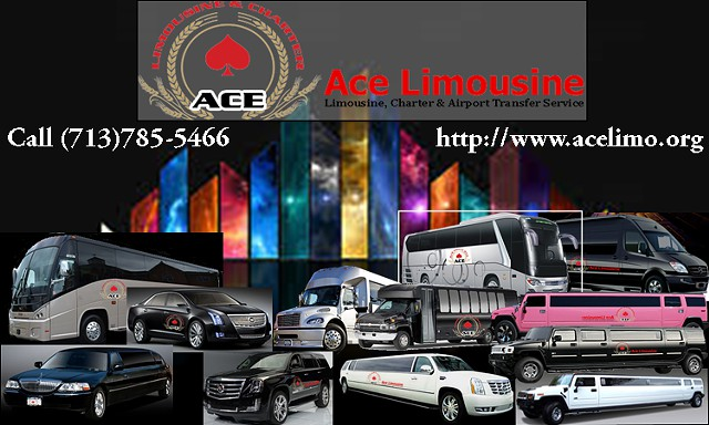 Limousines  Party Bus Limos  Charters  Hummers for your event