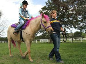 Pony Rides - Holiday Family Fun  Belton   Harker Heights