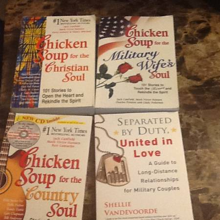 Chicken soup for the soul -   x0024 5  Temple