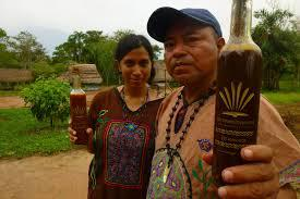 Well Prepared brewed ayahuasca tea and we perform also ceremony