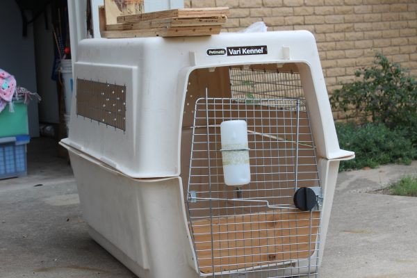 KENNEL FOR LARGE DOG - $100 (HARKER HEIGHTS)