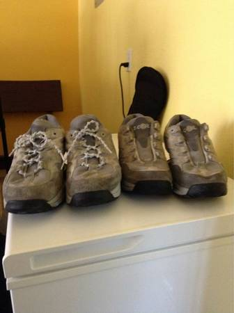 Z Coil shoes - $225 (Willow springs area)