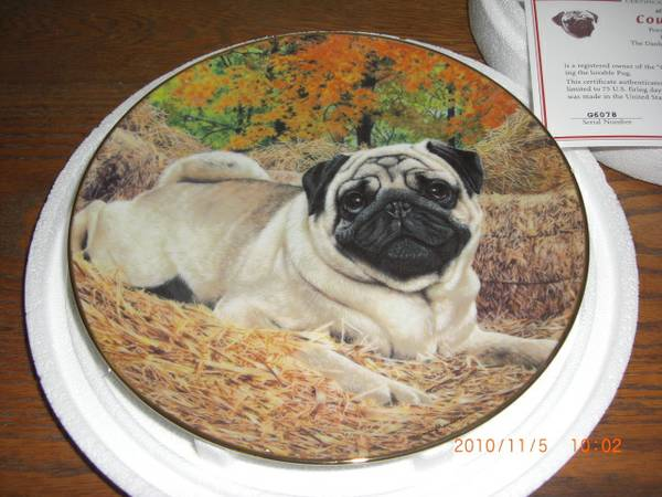 Collectable Plate - $20 (Killeen)