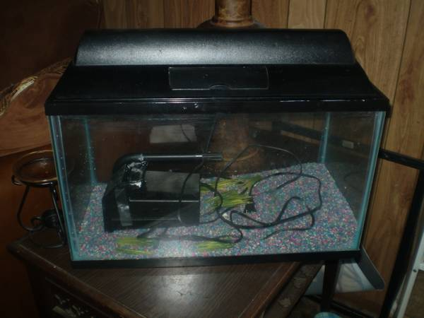 10 gallon fish tank - $25 (Killeen)