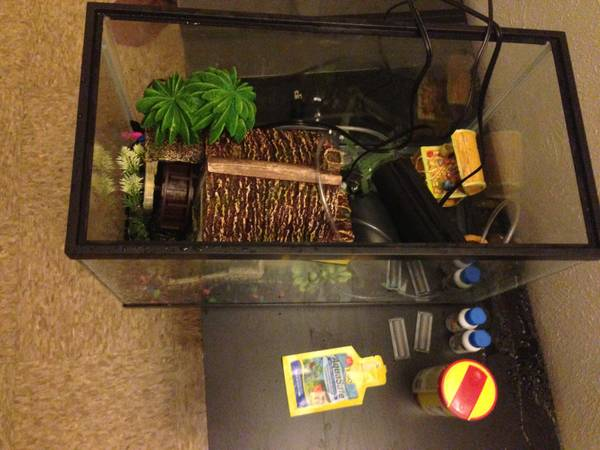 Glow-in-dark-fishtank - $100 (Fort hood, Tx)