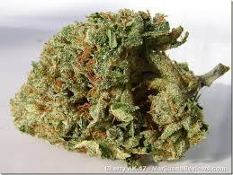 weed for sale 502 632-3751