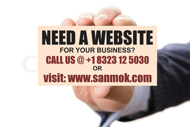 Website development starting from  250 at Sanmok Solutions
