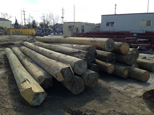 Pilings for sale -   x0024 75  New Orleans