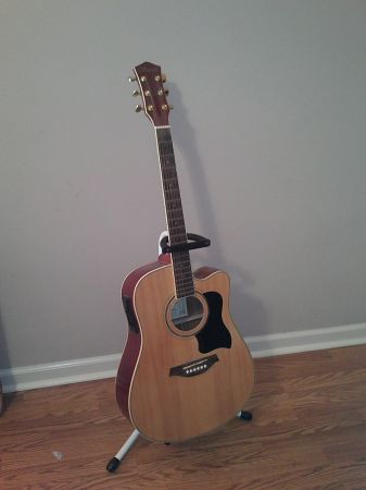 guitar and stand - $200