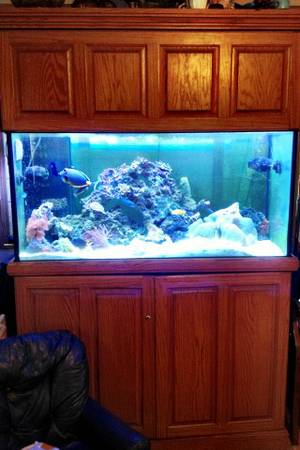 SALT WATER FISH TANK AQUARIUM 90 GALLON - $1200 (Lake Charles)