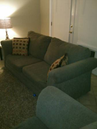 Sofa - $200 - $200 (North Laredo)