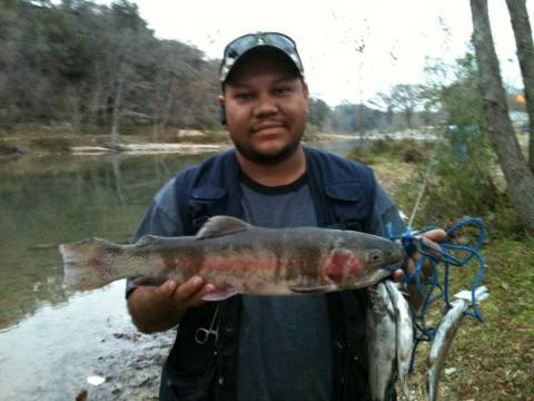 Rainbow trout guided fishing trips on the Guadalupe river - x00241 (Canyon tail race)