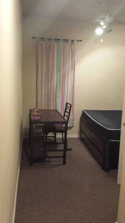 $365mo for rent (Females only) (Veranda Place Apartments)