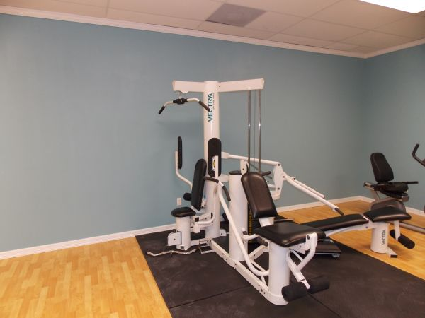 Vectra online home gym espotted
