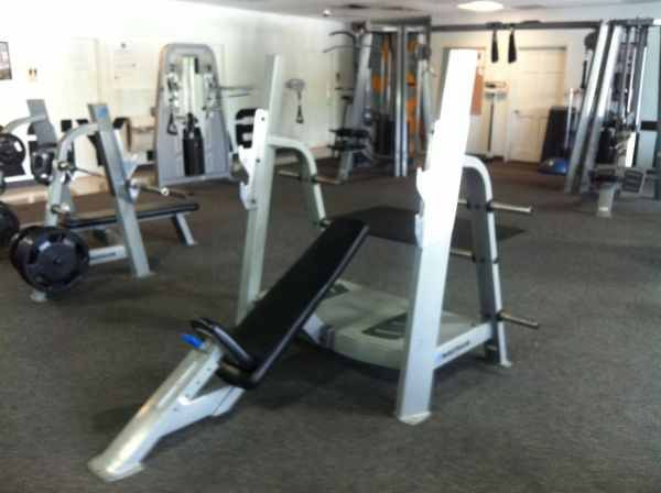 incline bench press commercial nautilus - $600 (edinburg)