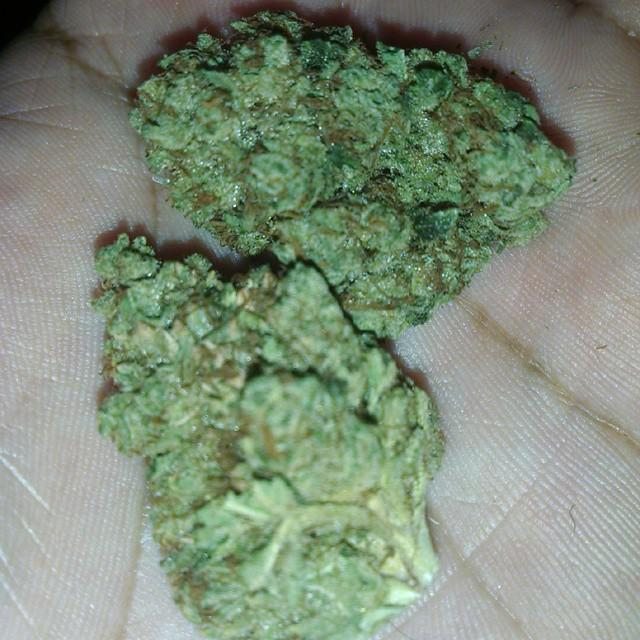 High grade marijuana buds and other strains for sale   call or text at 240 459-8062