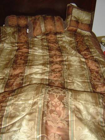 Comforter and pillow set, King - $30 (McAllen)