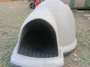 looking for igloo dog house (weslaco)
