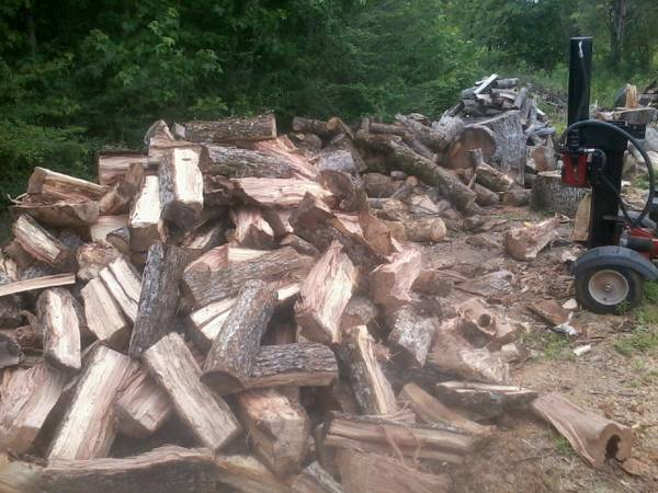 FIREWOOD 12 cords avail- sirious wood seller TRUDEAU TREE SERVICE (Wells (19 miles north of Lufkin along hwy 69 ))
