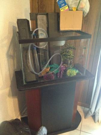 20 Gallon fish tank wstand and lots of extras - $100 (Lufkin, TX)