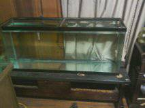 55 Gallon fish tank 50  no leaks holds water good condition   Marshall  TX