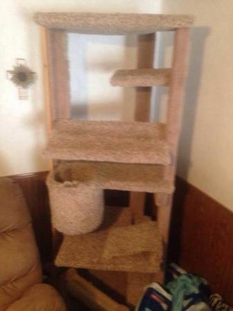 6ft tall cat tree house  Lufkin