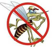Get  Rid  Of  Mosquitoes  Without  Chemicals  Or  Electricity  And  Take  Back  Your  Yard