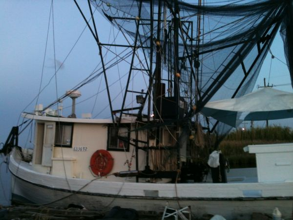 Own a Fleet of Shrimping boats - $95 (Ponchatoula)