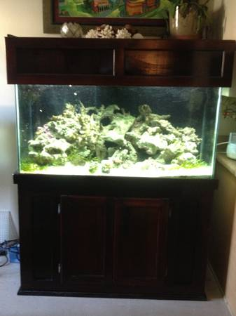 90 gallon saltwater aquarium stand and canopy - $500 (Metairie )