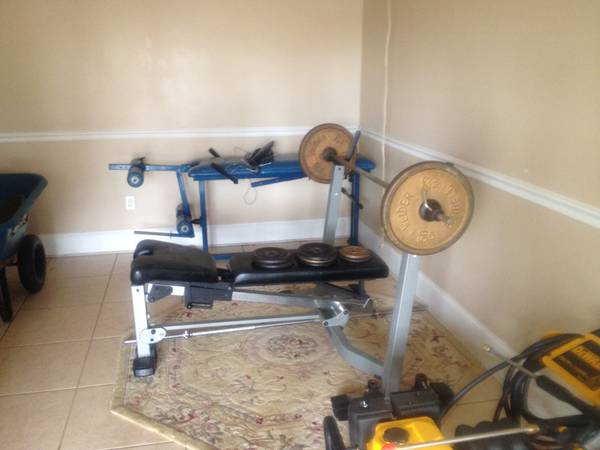NAUTILUS WEIGHT BENCH - x0024290 (WESTBANK(Algiers))